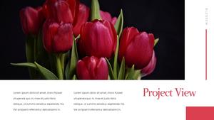 Tulip  튤립 PPT 16:9(파워포인트>프리미엄 PPT>자연/환경) - 예스폼 쇼핑몰 #23