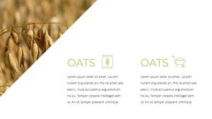 곡식, 곡물  Grain 파워포인트 template(파워포인트>프리미엄 PPT>자연/환경) - 예스폼 쇼핑몰 #6