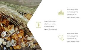 곡식, 곡물  Grain 파워포인트 template(파워포인트>프리미엄 PPT>자연/환경) - 예스폼 쇼핑몰 #13