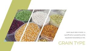 곡식, 곡물  Grain 파워포인트 template(파워포인트>프리미엄 PPT>자연/환경) - 예스폼 쇼핑몰 #16