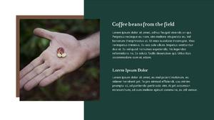커피 농장  Coffee Plantation 템플릿(파워포인트>프리미엄 PPT>자연/환경) - 예스폼 쇼핑몰 #6