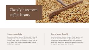 커피 농장  Coffee Plantation 템플릿(파워포인트>프리미엄 PPT>자연/환경) - 예스폼 쇼핑몰 #7