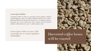 커피 농장  Coffee Plantation 템플릿(파워포인트>프리미엄 PPT>자연/환경) - 예스폼 쇼핑몰 #8