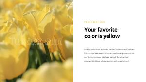 Yellow Spectrum ppt 템플릿