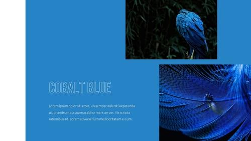 블루 스펙트럼 (Blue Spectrum) PPT 16:9 - 섬네일 11page