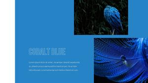 블루 스펙트럼 (Blue Spectrum) PPT 16:9 #11