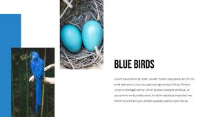 블루 스펙트럼 (Blue Spectrum) PPT 16:9 #18