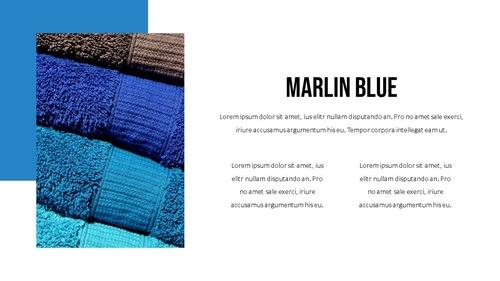 블루 스펙트럼 (Blue Spectrum) PPT 16:9 - 섬네일 20page