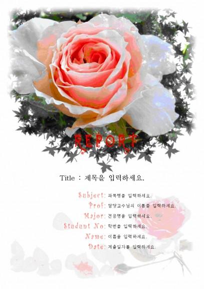 분홍 장미레포트 표지