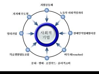 사회적기업의 현실과 지속가능한 발전을위한 과제 page 8